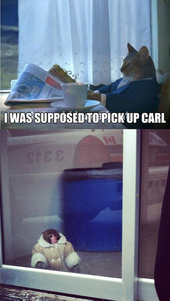Ikea Monkey Carl