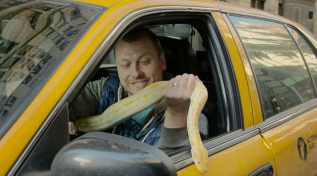 NYC Cabbie Terrorizes Passengers With Giant Snake