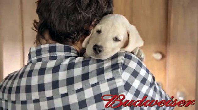 Budweiser - Friends Are Waiting