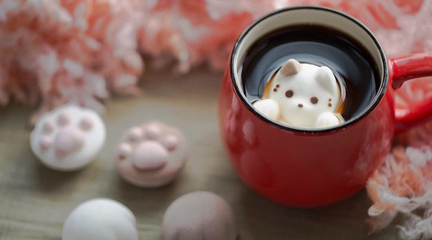 These Cats Are So Cute That You'll Drink Them Up.. Literally