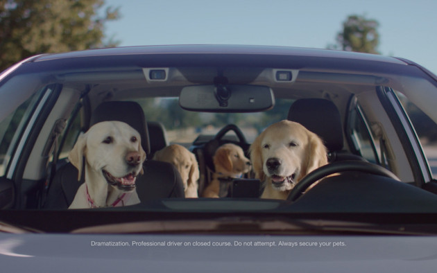 The Barkleys featured in new Subaru ad campaign