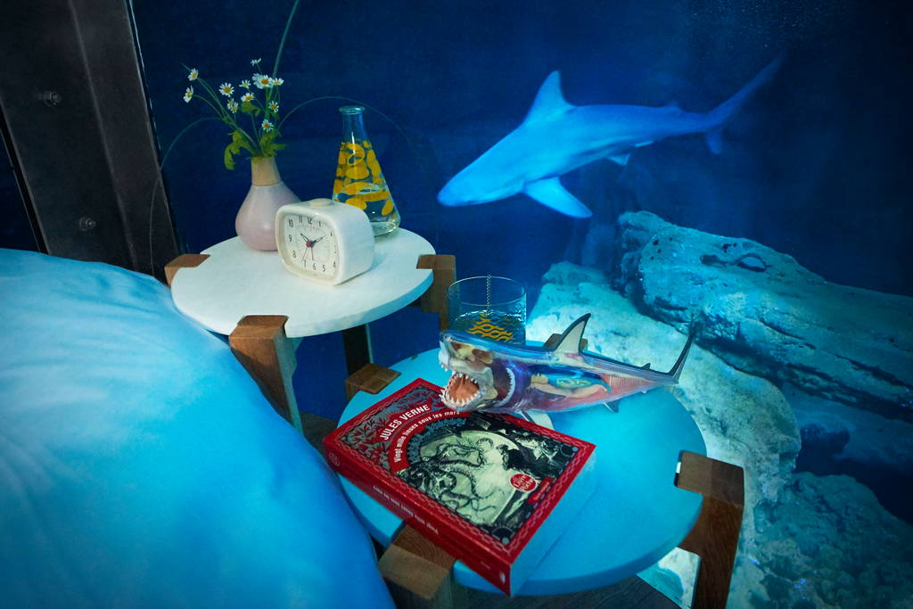 Airbnb Shark Aquarium