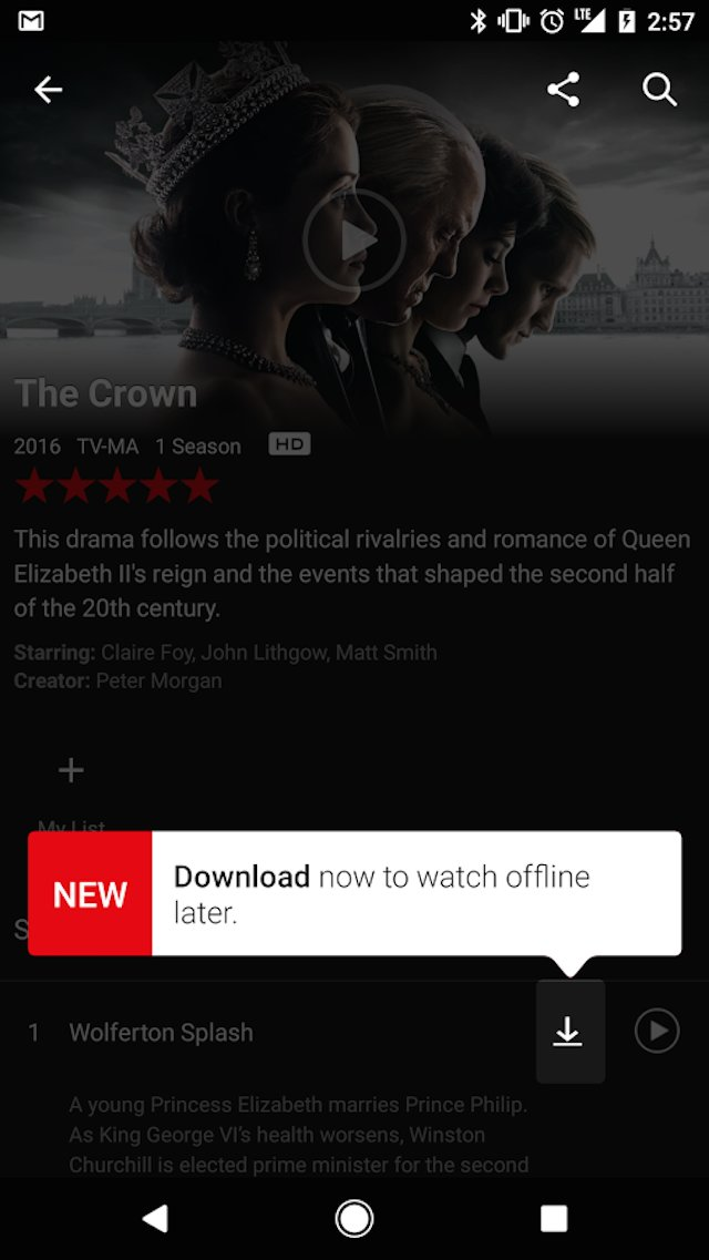 Netflix download feature on app