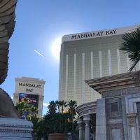 Las Vegas Has A Lot More To Offer Than Just Gambling And Buffets