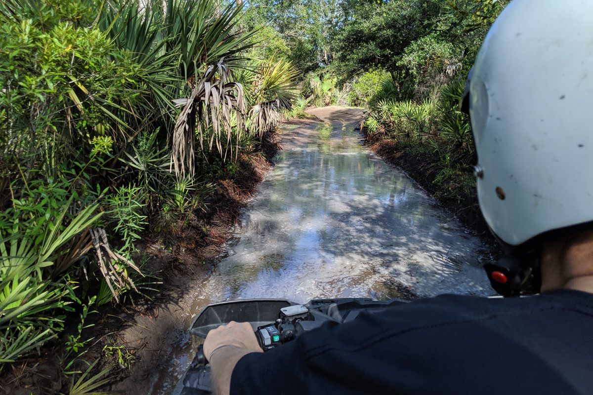 Florida Tracks & Trails in Punta Gorda, Florida