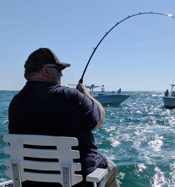 Tarpon Fishing in Punta Gorda, Florida